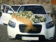 автомобиль на свадьбу Закарпатье