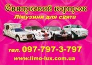 Лімузини в Ужгороді