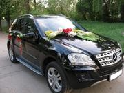 Аренда / заказ / прокат автомобиля (авто) на свадьбы и торжества