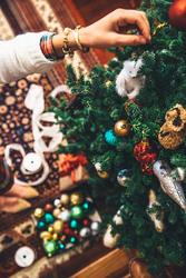Гуляночка в Карпатах (Новый год)
